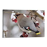 冬の鳥は何を食べるキャットキャンバスプリント壁の装飾モダンポップアートエントランス絵画キャンバ壁掛けインテリア絵画部屋の装飾 Frame-style1 12×18inch(30×45cm)