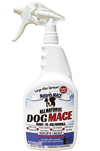 Nature's Mace Dog Repellent 40oz Spray/Treats 1,000 Sq. Ft. / Keep Dogs Out of Your Lawn and...
