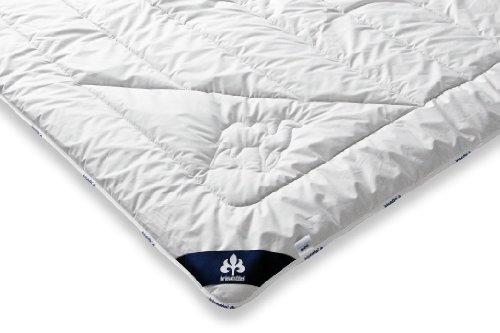 Badenia Bettcomfort Irisette Kamel Steppbett, Duo Bettdecke aus Kamelhaar für den Winter, 200 x 200 cm, weiß