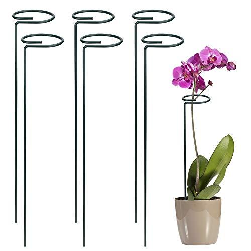 FT-SHOP Pflanzenstütze Staudenhalter Strauchstütze Stahl Garden Single Stem Stützring für Pflanzen Blumen Gemüse 40cm 6 Stücke