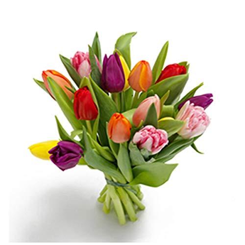 Florclick - Ramo de 15 Tulipanes con tarjeta dedicatoria gratuita. Flores frescas entrega en 24...