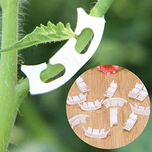 100Pcs pianta di pomodori Chiusura a Clip piantare Viti di Verdure Agricoltura della Clip di Vite Bussole Viticcio Binder Piante Clip per Serra