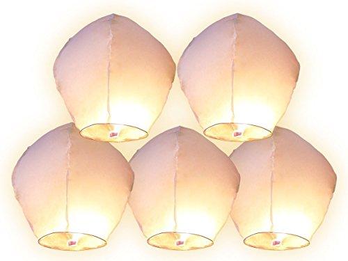 Lot de 5 lanternes en papier Blanc