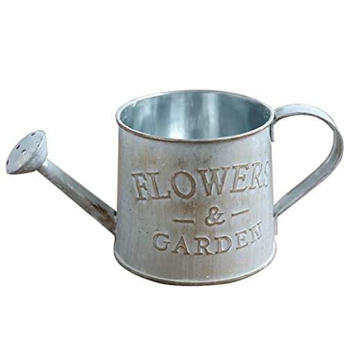TGHOMECRAFT Rustic Mini Tin Watering Can Planter, Country Primitive Metal Flower Pot Succulent Container , Metal Flower Pot Succulent Container Planter for Home and Office Décor.