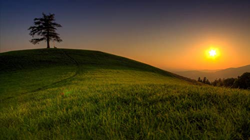 lxlwxh541 Diamant Painting Bilder Tree Grass Travichka Green Hills Mountain Tops Kreuzstich Wohnkultur 40X50Cm Round Geschenk