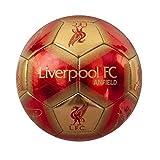 Liverpool FC Anfield Skill Ball Signature [Importación inglesa]