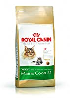 The adapted nutritional profile and energy intake of Kitten Maine Coon kibbles accompany the Maine Coon kitten's long growth. It contributes to the healthy development of the Maine Coon kitten's powerful bone structure thanks to a specific content of...