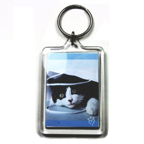 25 Large Blank Photo Keyrings 50 x 35 mm Insert 92033