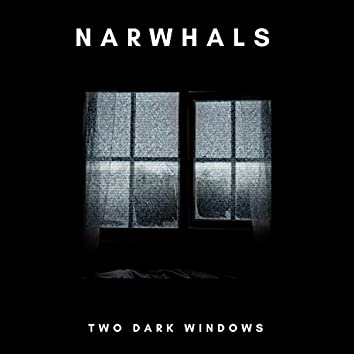Two Dark Windows