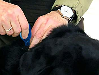 Beaphar - DiméthiCARE pipettes stop parasites - petit chien (<15kg) - 6 pipettes