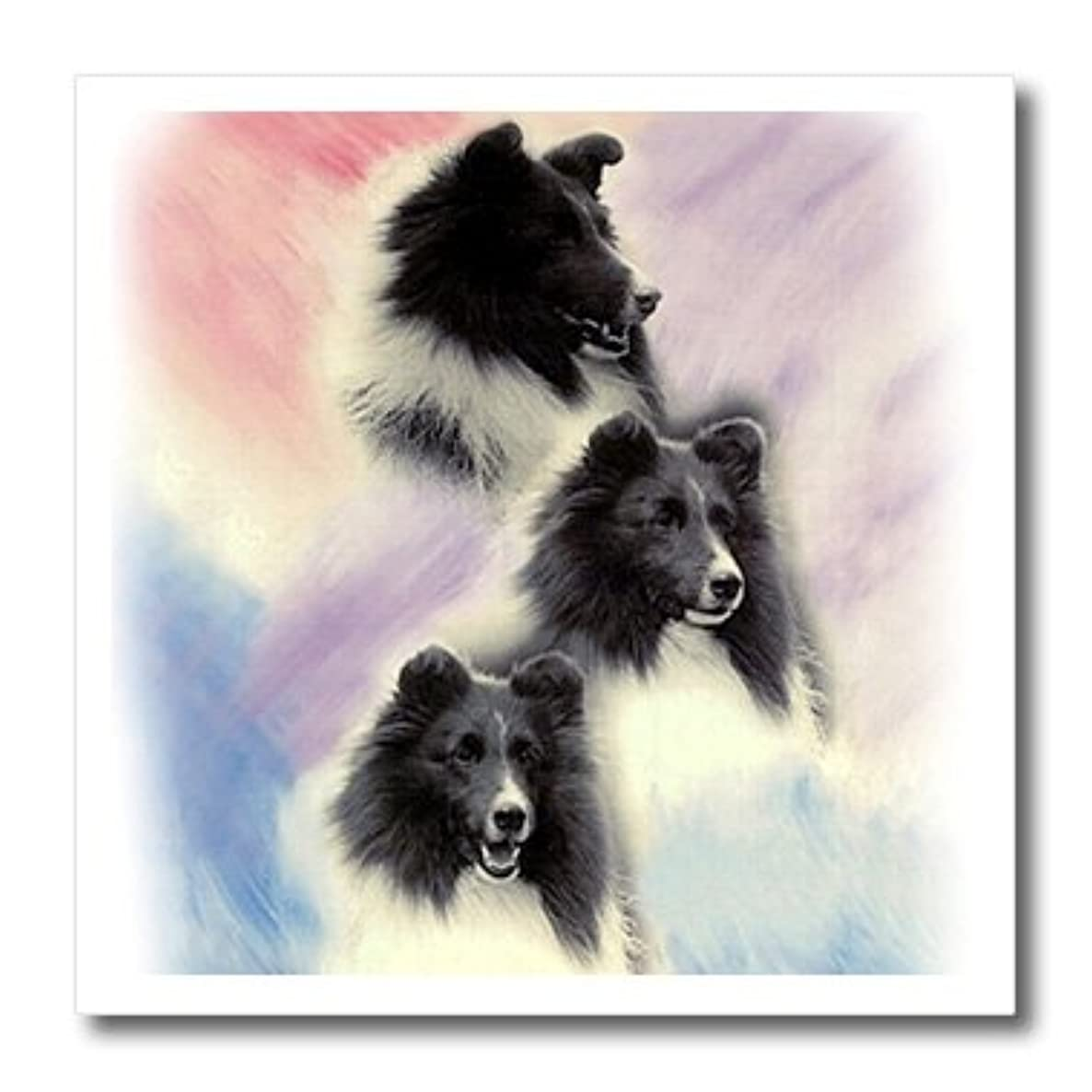 3dRose ht_1050_1 Black Sheltie-Iron on Heat Transfer for Material, 8 by 8-Inch, White
