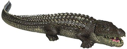 Blue Ribbon 006070 Exotique environnements Bouillonnement Alligator, 27,9 cm