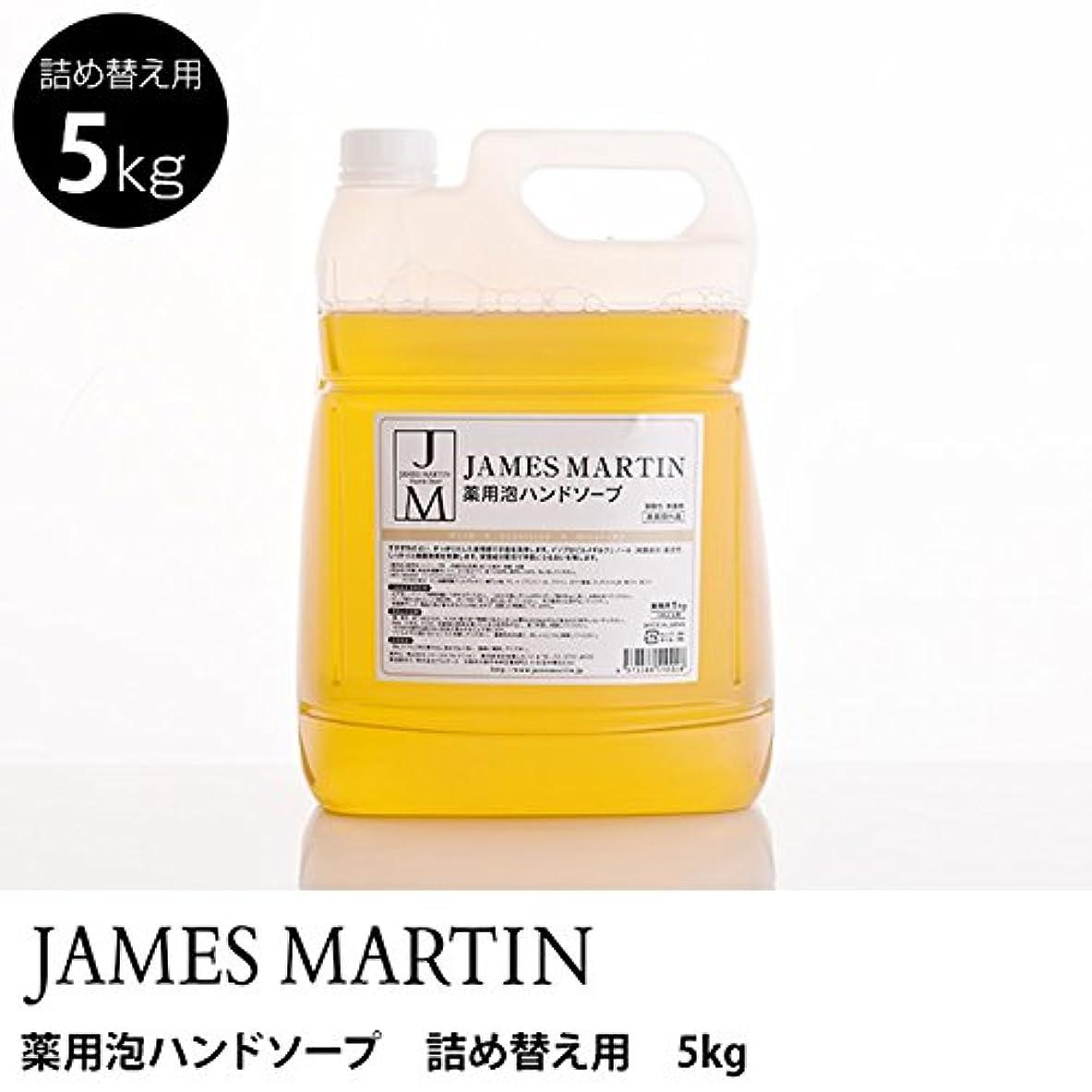 抜け目のない論理的しっとりジェームズマーティン 薬用泡ハンドソープ(無香料) 詰替用 5kg