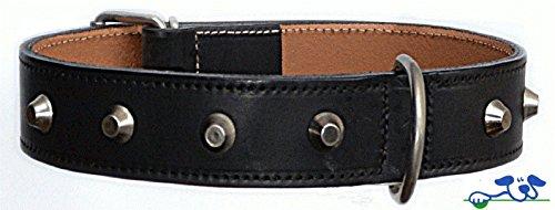 Hundehalsband, Leder, Nieten, 72 cm x 40 mm