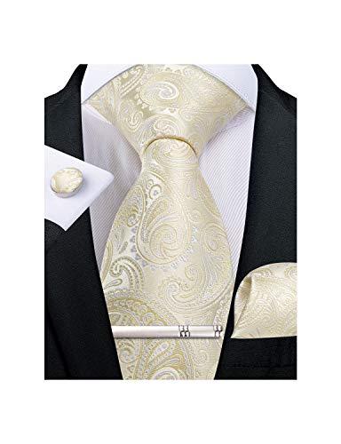 DiBanGu Champagne Paisley Gift Tie Set for Men Silk Hanky Cufflinks Tie Clip with Box
