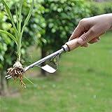 Garden Weeder - Herramienta de mano ergonómica para control de malezas, base de acero inoxidable, fácil eliminación de...