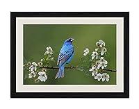 ブラック木製フレーム ホーム装飾ポスター 額入り絵画(春の青い鳥)40x30cm