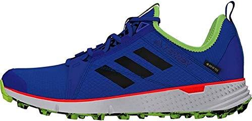 adidas Terrex Speed GTX, Chaussures de Loisirs et Sportwear Homme, Multicolore Bleu Gloire Noir Noir Vert Signal, 45 1/3 EU