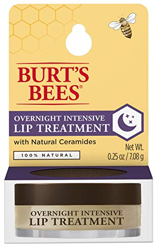 Overnight Intensive Lip Treatment by Burts Bees for Women - 0.25 oz Lip Treatment