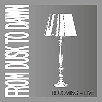 Blooming (Live)