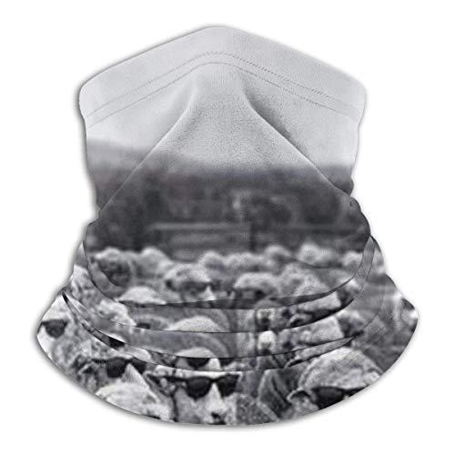 WH-CLA Sombreros para Hombre Mujer,Lindas Ovejas con Gafas De Sol Cuello Bufanda Protección UV Polainas De Cuello Antideslizante Bufanda Respirable Pañuelo De Cabeza para Motocicleta Partido Pesca