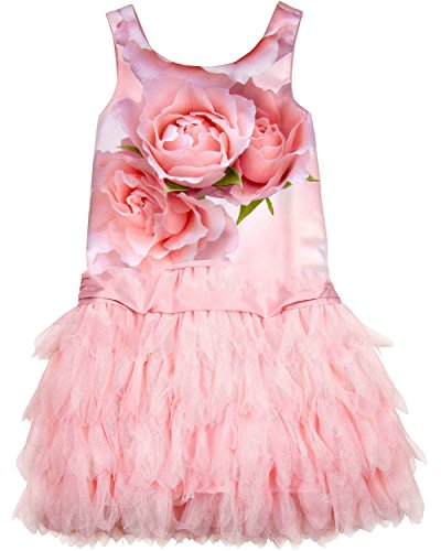 Biscotti Girl's Party Dress Rose 12