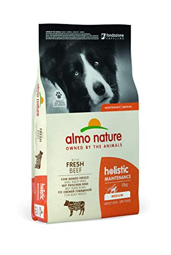 almo nature Holistic dog adult medium mangime secco gusto manzo e riso kg.12