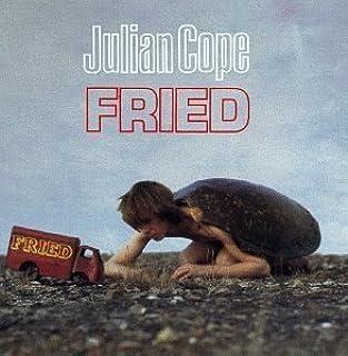 Fried by Julian Cope (1990-07-19)
