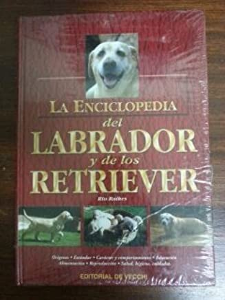 Amazon.es: Editorial De Vecchi: Libros