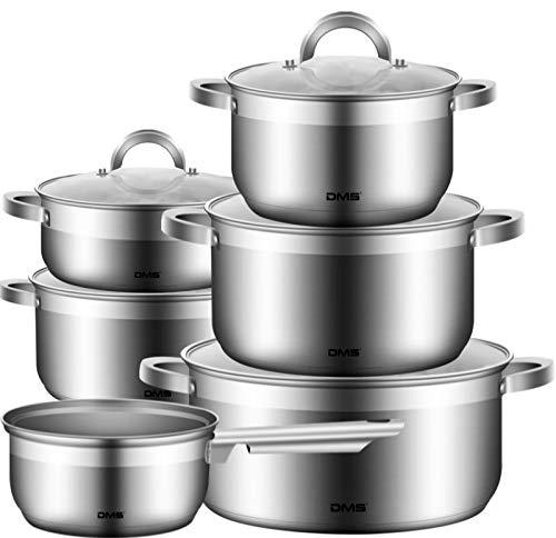 DMS 11-teiliges Topfset aus hochwertigem Edelstahl | Induktion | beschichtetes Kochset| Kochgeschirr | hochwertiges Küchenset | pflegeleicht | Stielkasserolle | Glas Deckel TSE2011C