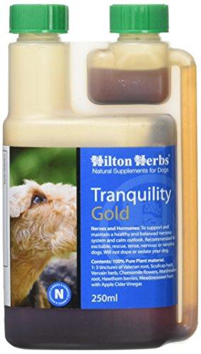 Hilton Herbs Tranquility Gold 250 ml Complément Alimentaire Chien Hyperactivité, Stress et Nervositée