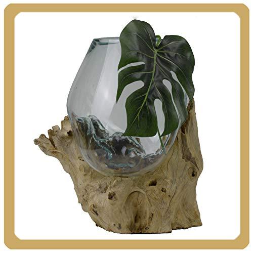 Wurzelholz Glas-Vase Wurzel-Vase Deko-Glas Kaffeewurzel Holz Design Blumenvase groß