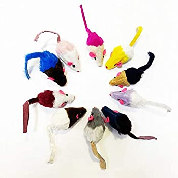 Jouet Chat, 10 Pièces Souris Chat Jouet en Arc en, Souris en Peluche Jouet Herbe à Chat pour Chat avec Cloche, Jouet Chat Interactif Animaux Domestiques Toys pour Chat Chaton