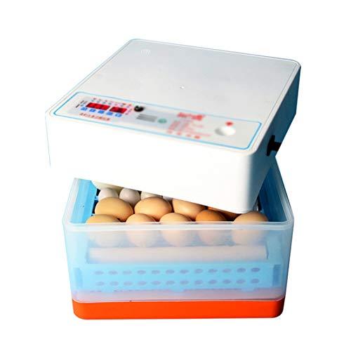 Incubadora Totalmente Automática 24 Huevos Incubadoras Pequeñas, Incubadoras De Torneado De Huevos Automáticos Inteligentes Incubadores Para El Hogar Para Los Pollos De Incubación Pato G(Color:blanco)