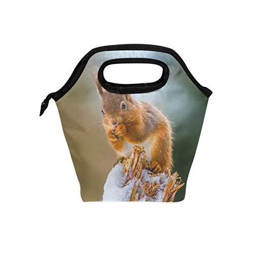 hunihuni Kühltasche für den Winter, niedliches Eichhörnchen, isoliert, auslaufsicher, Bento-Box, Handtasche, Lunchbox mit Reißverschluss für Schule, Büro, Picknick