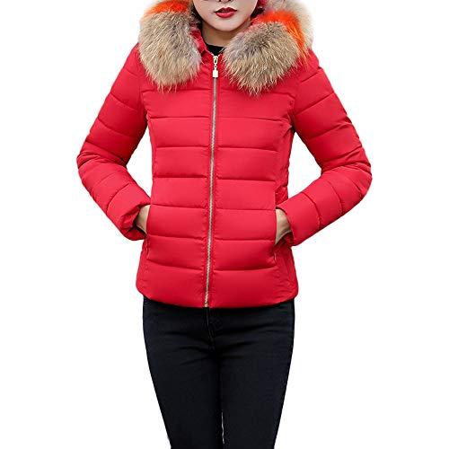 NUSGEAR Daunenjacke Damen Mantel Winter Jacke Ultraleicht Steppjacke Parka Outwear Daunenmantel Coat Warme Steppmantel Baumwolle Daunenjacke Baumwolle große schlanke Kurze Baumwolljacke