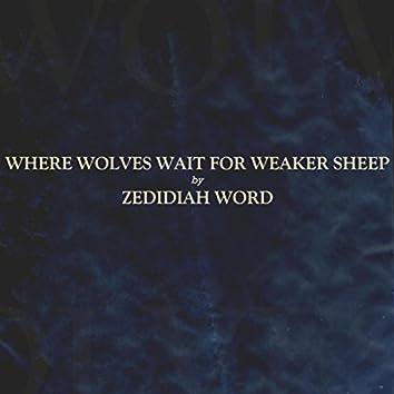 Where Wolves Wait for Weaker Sheep