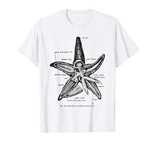 Vintage Marine Biology Starfish Sea Star Tee T-shirt