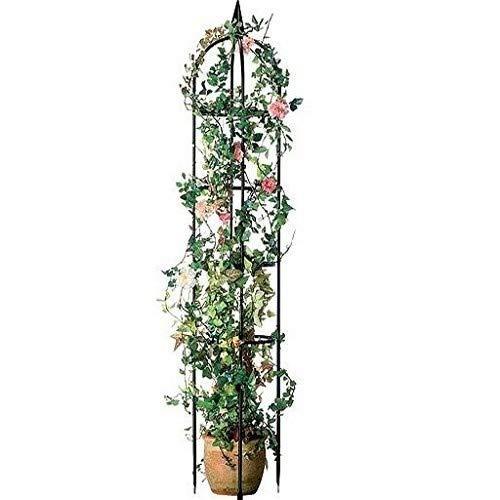 ABC Home Garden Pflanzenbogen | Rosenbogen | Rankhilfe, Metall, schwarz, 240 cm H