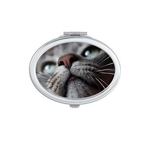 DIYthinker Animal Big Ear Shoot Photo Cat Ovale Miroir de Maquillage Compact Portable Mignon Miroirs de Poche à la Main Cadeau Multicolor