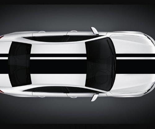 myDruck-Store Viperstreifen 14 x 200 cm Rallystreifen Rennstreifen Autoaufkleber Viper 2N003, Farbe:Schwarz Matt;Viper Größe:14cm x 200cm