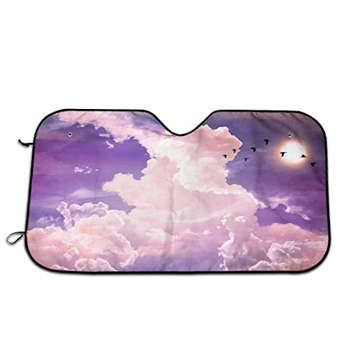 Roze Vreemde Wolken Vogels Auto Voorraam Zonnescherm Windscherm Zonneschermen Venster Voorruit Cover Universele Fit Auto UV Ray Zon en Warmte Visor Bescherming (27,5 X 51 Inch)