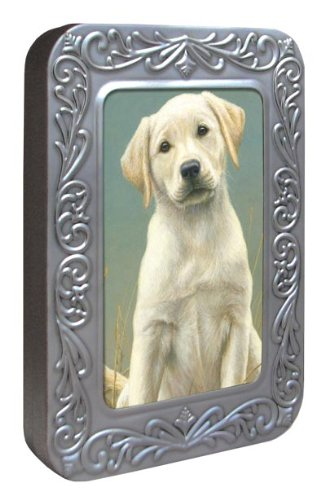 Tree-Free Greetings Noteables Notecards In Reusable Embossed Tin, 12 Card Assortment, Recycled, 4 x 6 Inches, Puppy Dog Eyes, Multi Color (76036)