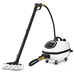 Best Professional - Dupray Tosca Steam Cleaner