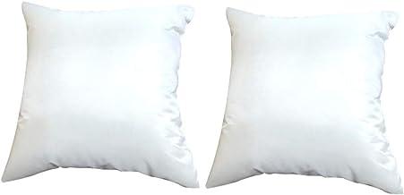 ヌードクッション 2個 セット 45×45cm 洗える クッション中材 手洗い 清潔 背当てタイプ FABRIC'Sファブリックス へたりにくい 帝人クリスター 日本製 (450, 2)