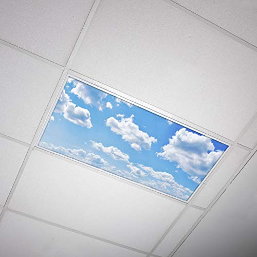Octo Lights - Fluorescent Light Covers 2x4 - Fluorescent Light Filters - Ceiling Light Covers - for Classroom, Kitchen, Office - 001