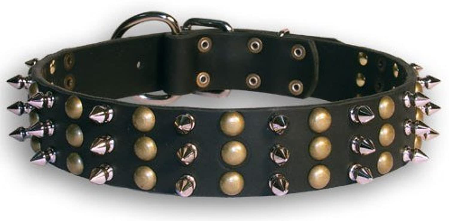 Dean and Tyler TOLERANCE , Dog Collar with Beautiful Brass Stud and Nickel Spikes  Black  Size 22Inch by 11 2Inch  Fits Neck 20Inch to 24Inch