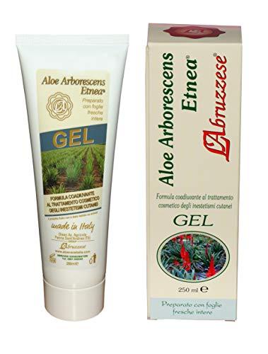 Pur Gel Aloe Arborescens 100%, Biologique, Inesthétismes cutanés, Vegan, Made in Italy, 250 Ml