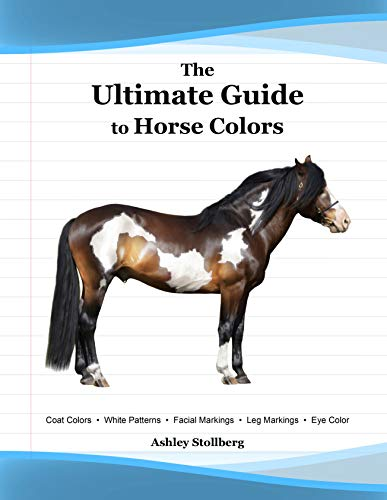 The Ultimate Guide to Horse Colors (English Edition)