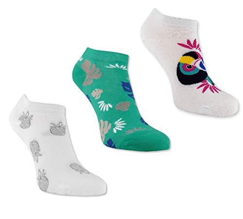 Trichter 6 Paar Tucan Gute Laune Sneaker-Socken Füsslinge für Damen - Hochwertige Frauen Sportsocken in bunten Farben - Damensocken Set für Sneaker, Sport & Zuhause - Socklinge Größe 39-42 Türkis